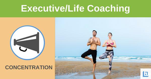 leadership executive coaching