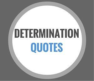 quote determination